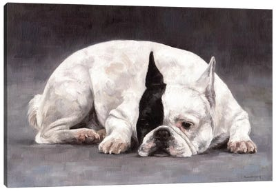 French Bulldog Canvas Art Print