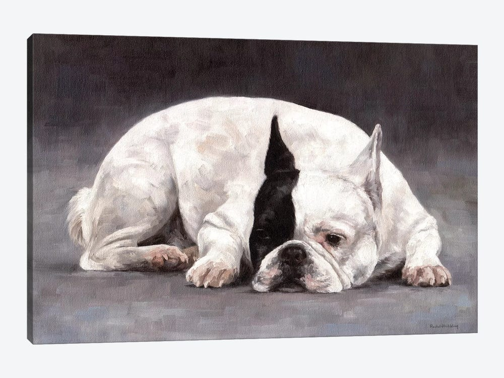 French Bulldog by Rachel Stribbling 1-piece Canvas Artwork