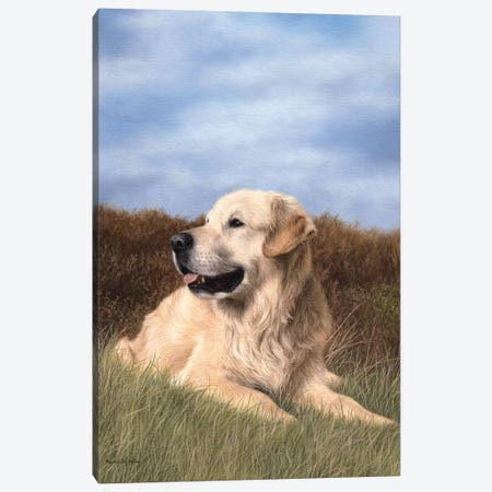 Golden Retriever Canvas Print #SLG20} by Rachel Stribbling Canvas Wall Art