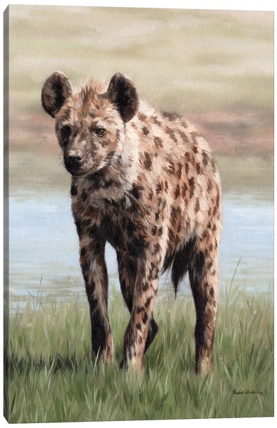 Hyena Canvas Art Print