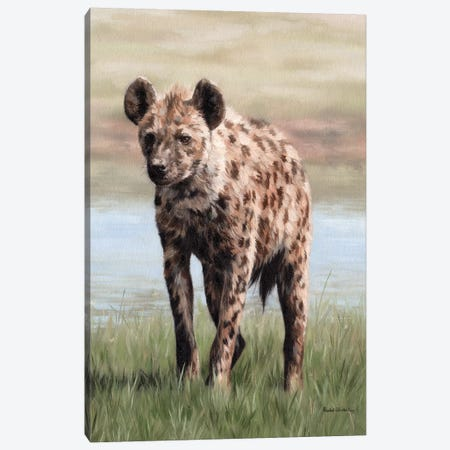 Hyena Canvas Print #SLG22} by Rachel Stribbling Canvas Art