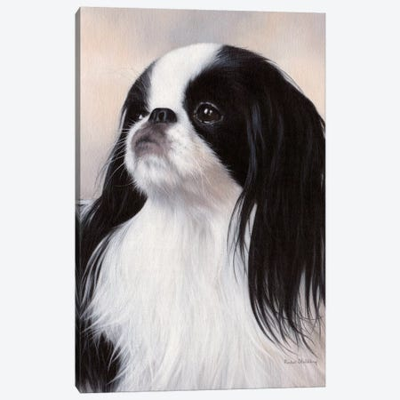 Japanese Chin Dog Portrait 3-Piece Canvas #SLG24} by Rachel Stribbling Canvas Print