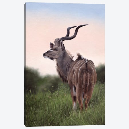 Kudu Canvas Print #SLG25} by Rachel Stribbling Canvas Art Print