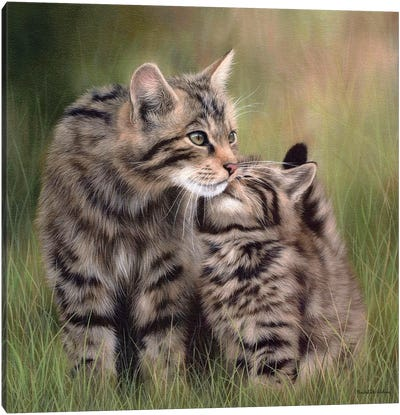 Scottish Wildcats Canvas Art Print