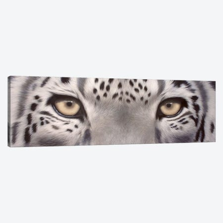 Snow Leopard Eyes Canvas Print #SLG29} by Rachel Stribbling Canvas Artwork