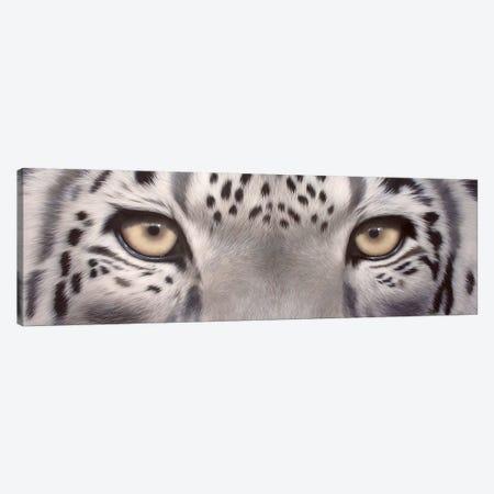 Snow Leopard Eyes Canvas Print #SLG29} by Rachel Stribbling Canvas Artwork