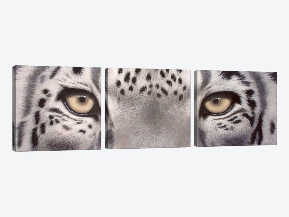 Snow Leopard Eyes by Rachel Stribbling 3-piece Canvas Print
