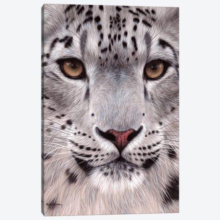 Snow Leopard Face Canvas Print #SLG30} by Rachel Stribbling Canvas Print