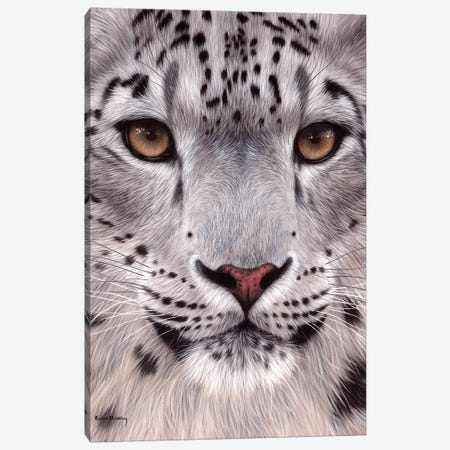 Snow Leopard Face Canvas Print #SLG30} by Rachel Stribbling Canvas Print