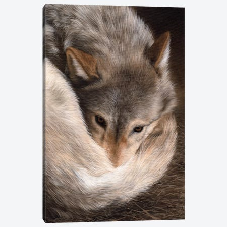 Timber Wolf Canvas Print #SLG33} by Rachel Stribbling Canvas Print