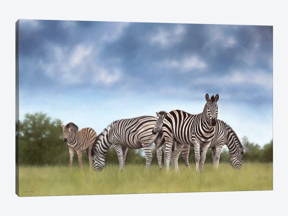 Zebras by Rachel Stribbling 1-piece Canvas Art Print