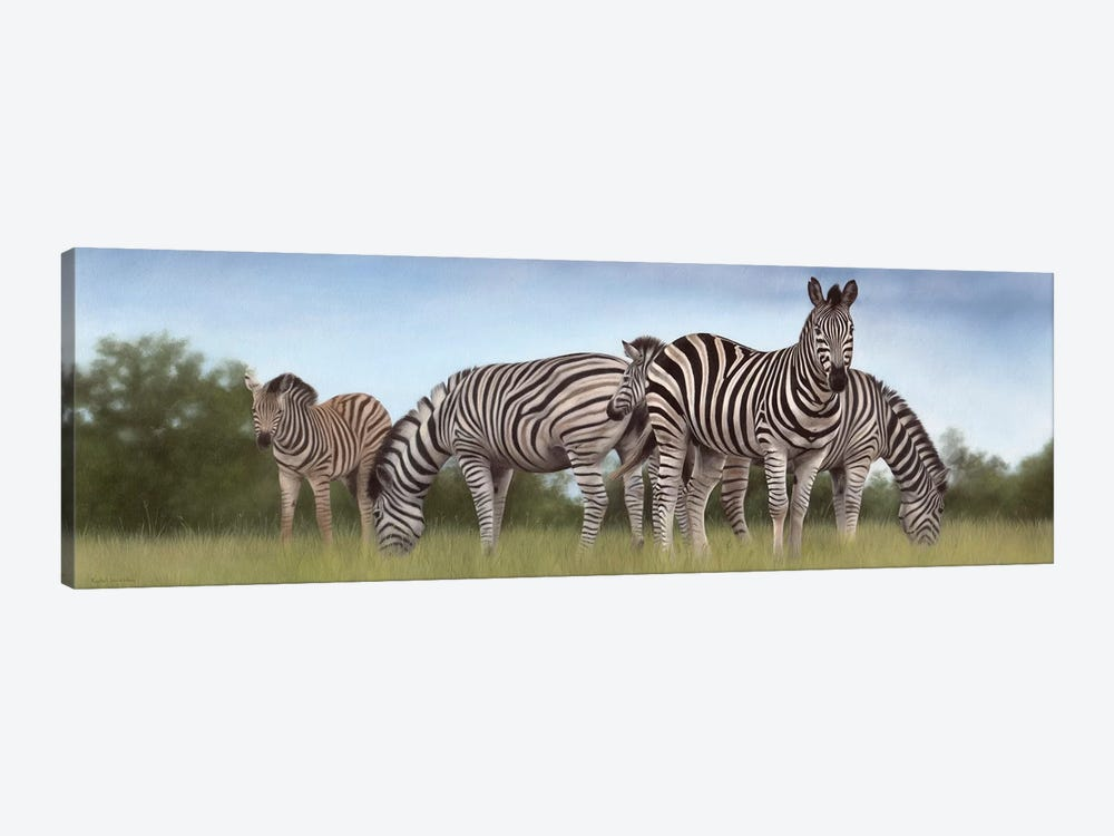 Zebras Panoramic by Rachel Stribbling 1-piece Canvas Artwork