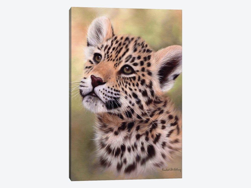 Jaguar Cub by Rachel Stribbling 1-piece Canvas Wall Art