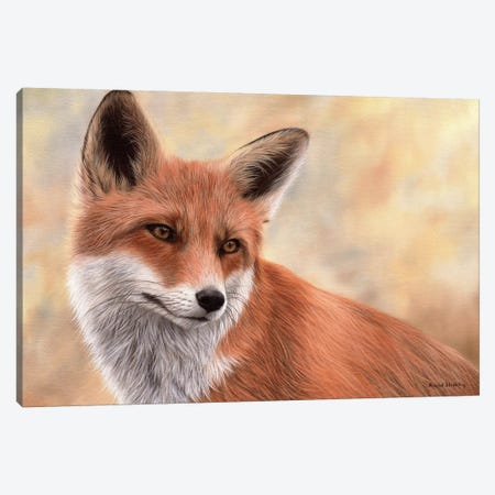 Red Fox Canvas Print #SLG48} by Rachel Stribbling Canvas Art
