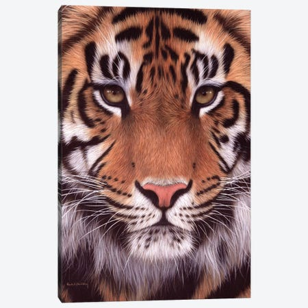 Sumatran Tiger Canvas Print #SLG50} by Rachel Stribbling Canvas Print