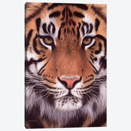 Sumatran Tiger 3-Piece Canvas #SLG50} by Rachel Stribbling Canvas Print