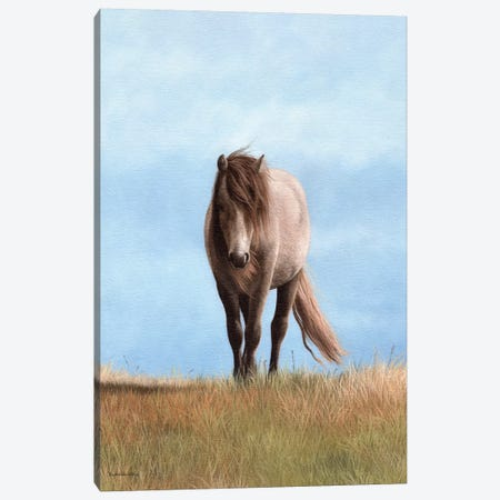Welsh Pony 3-Piece Canvas #SLG52} by Rachel Stribbling Art Print