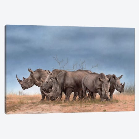 White Rhinos Canvas Print #SLG53} by Rachel Stribbling Canvas Art Print