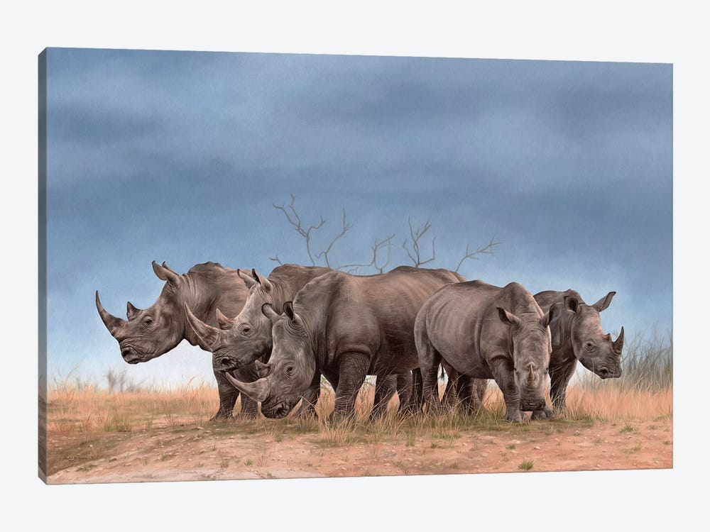 White Rhinos by Rachel Stribbling 1-piece Canvas Artwork