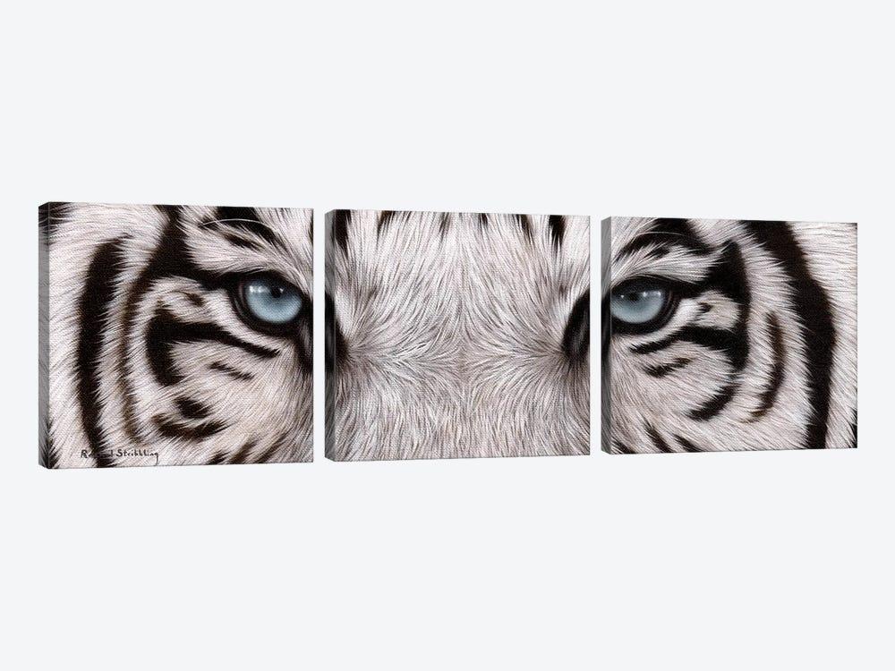 White Tiger Eyes by Rachel Stribbling 3-piece Art Print