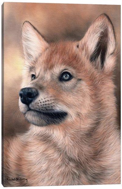 Wolf Pup Canvas Art Print