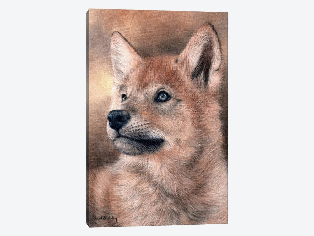 Wolf Pup by Rachel Stribbling 1-piece Canvas Art Print