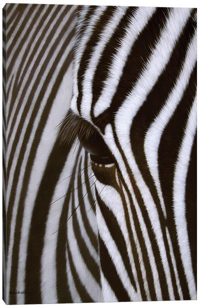 Zebra Eye Canvas Art Print