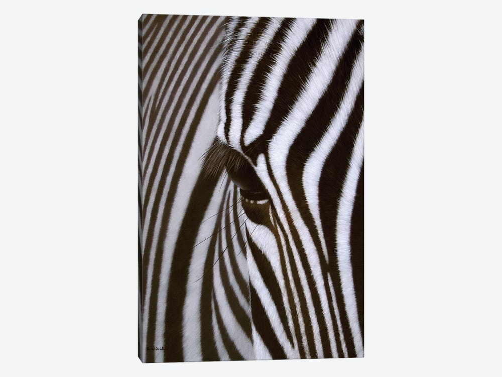 Zebra Eye by Rachel Stribbling 1-piece Canvas Art Print