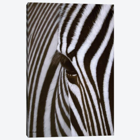 Zebra Eye Canvas Print #SLG58} by Rachel Stribbling Canvas Art Print