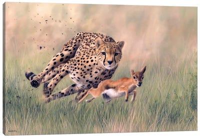 Cheetah And Baby Gazelle Canvas Art Print