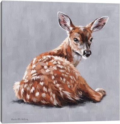 Annabelle Canvas Art Print