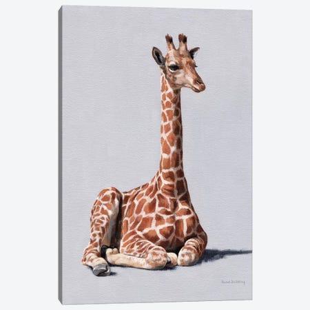 Delia Canvas Print #SLG67} by Rachel Stribbling Canvas Art Print