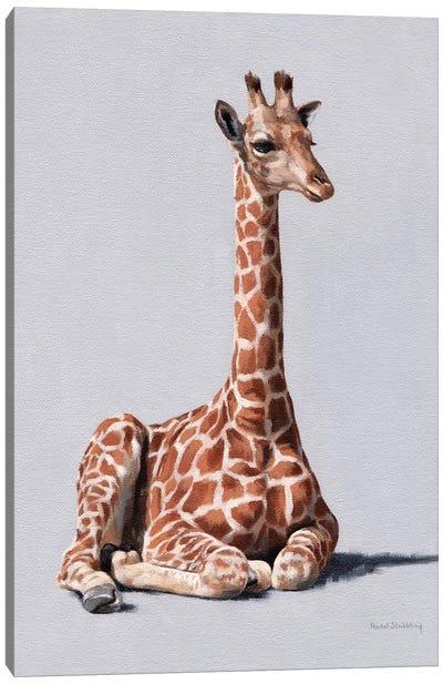 Delia Canvas Art Print