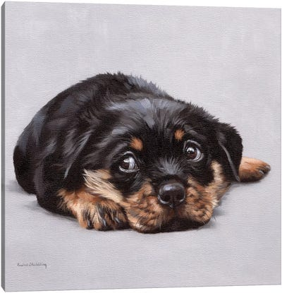 Dexter Canvas Art Print