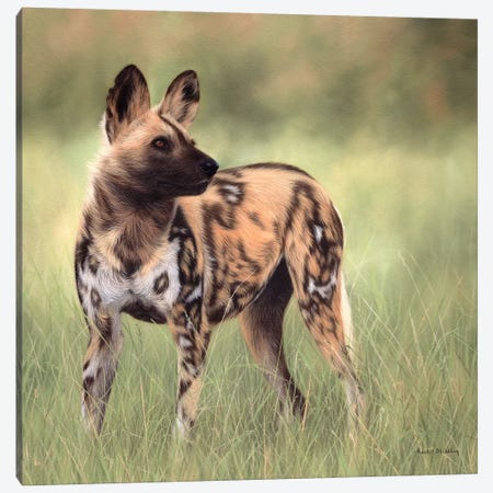 African Wild Dog Canvas Print #SLG6} by Rachel Stribbling Canvas Wall Art