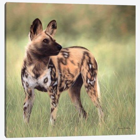 African Wild Dog Canvas Print #SLG6} by Rachel Stribbling Canvas Wall Art