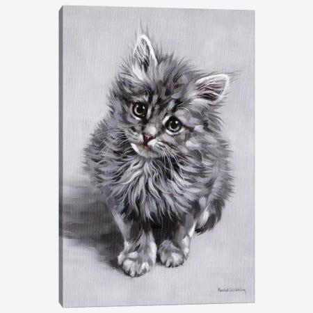 Minnie Canvas Print #SLG72} by Rachel Stribbling Canvas Art Print