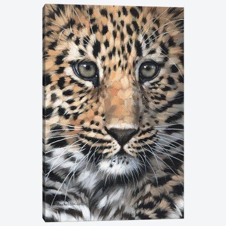 Leopard Cub Canvas Print #SLG81} by Rachel Stribbling Canvas Artwork