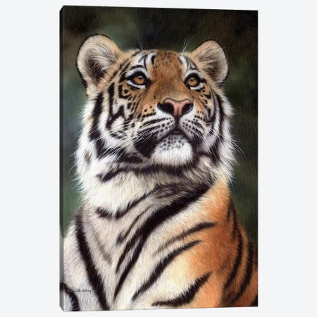 Amur Tiger Canvas Print #SLG9} by Rachel Stribbling Canvas Art Print