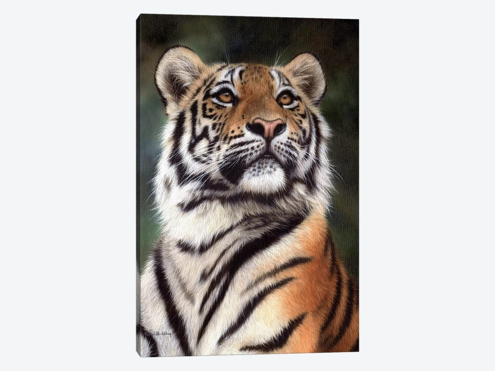 Amur Tiger by Rachel Stribbling 1-piece Art Print