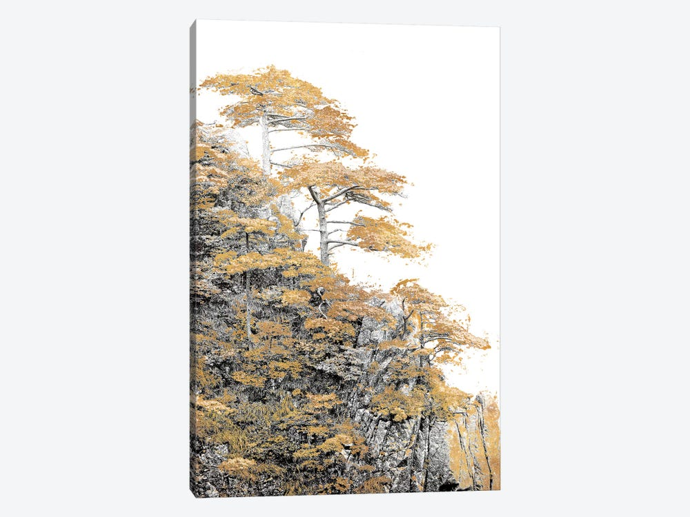 Immortal Pine by Shelley Lake 1-piece Canvas Art