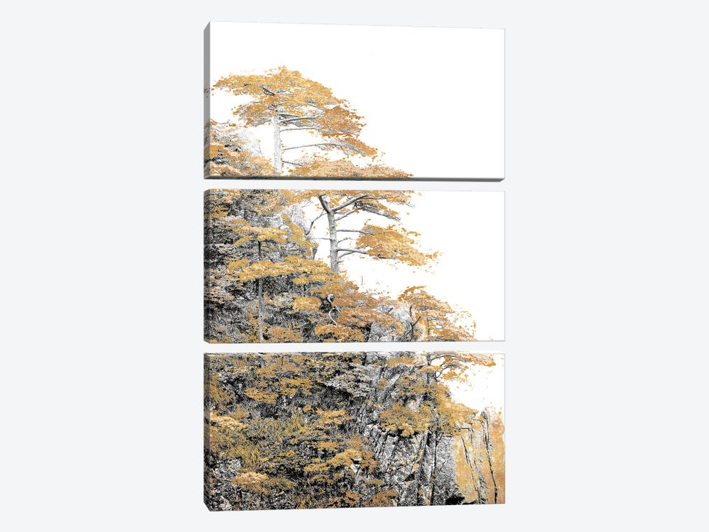 Immortal Pine by Shelley Lake 3-piece Canvas Wall Art