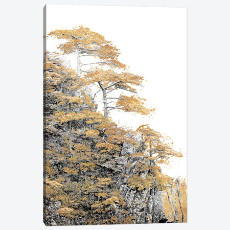 Immortal Pine 3-Piece Canvas #SLK22} by Shelley Lake Canvas Artwork
