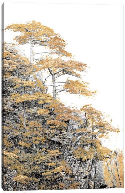 Immortal Pine Canvas Art Print