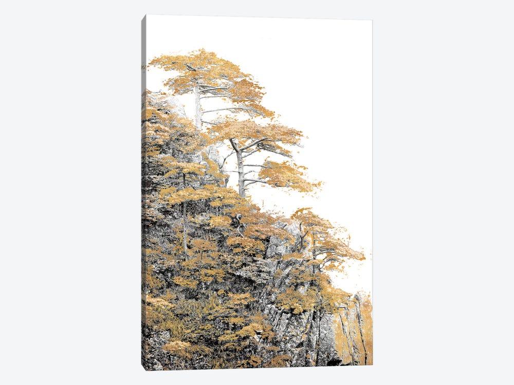 Immortal Pine by Shelley Lake 1-piece Canvas Art
