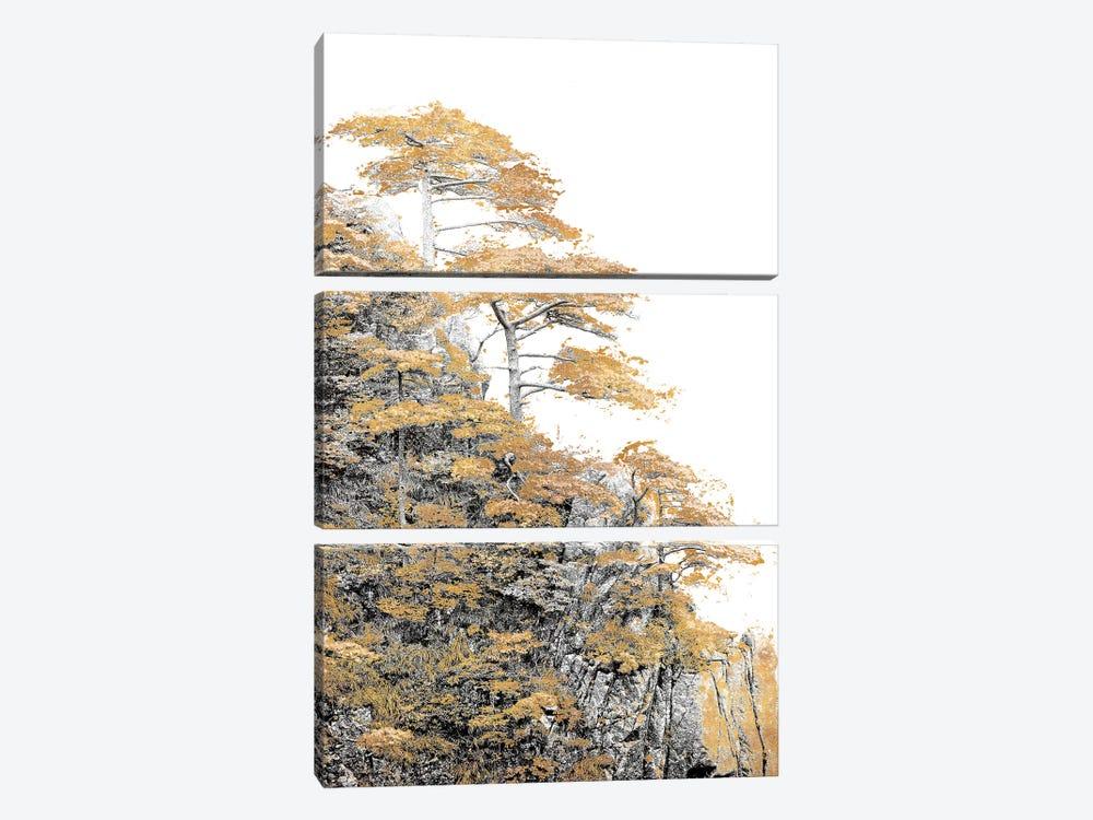 Immortal Pine by Shelley Lake 3-piece Canvas Wall Art