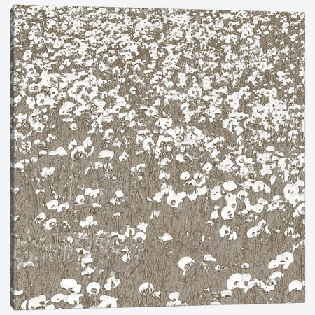 Neutral Fields Canvas Print #SLK31} by Shelley Lake Canvas Art Print