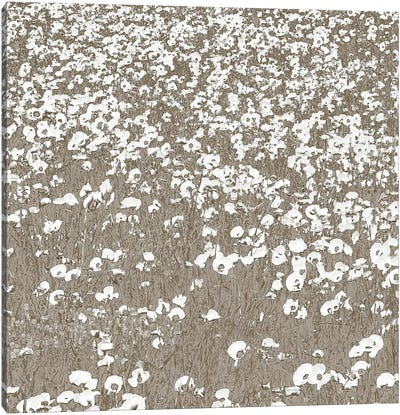 Neutral Fields Canvas Art Print