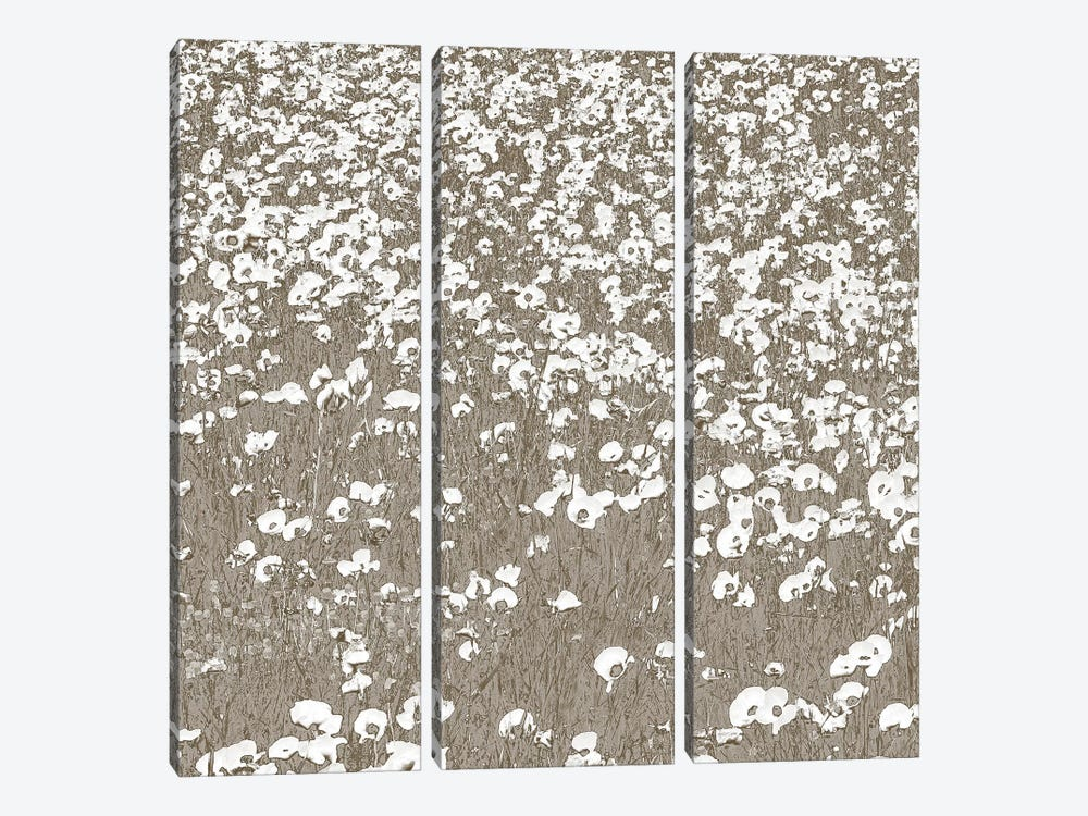Neutral Fields by Shelley Lake 3-piece Canvas Artwork