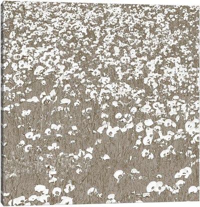 Neutral Fields Canvas Art Print